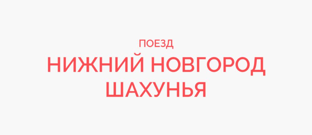 Поезд Нижний Новгород - Шахунья