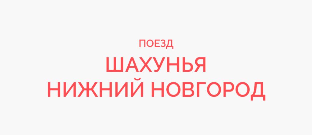 Поезд Шахунья - Нижний Новгород
